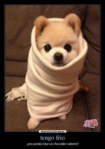 tengo frío